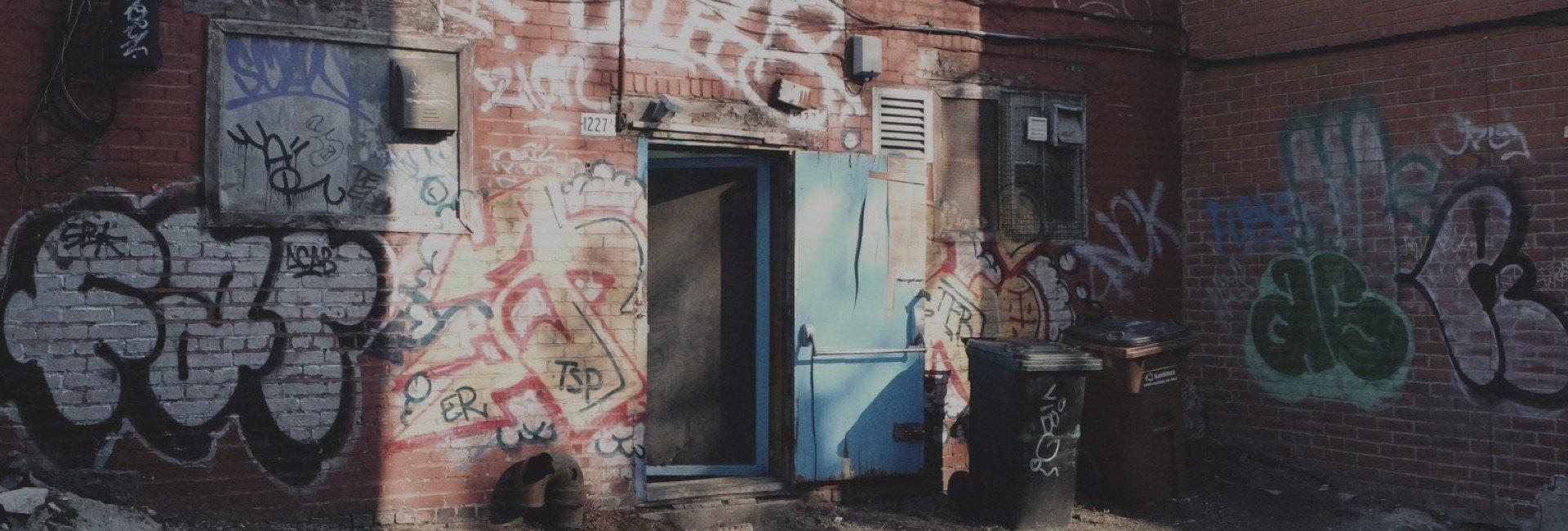The Urban Activist