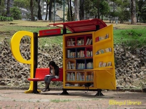 Library in the park