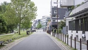 Malas buenas hierbas para ciudades más verdes
