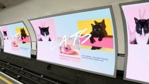 Esta iniciativa cambia la publicidad del metro de Londres por fotos de gatitos