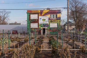 Agrihood – An alternative neighborhood focusing on urban gardening