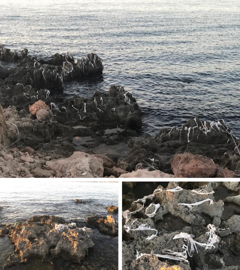 170904-citycise-welovewatermovement-collage-2