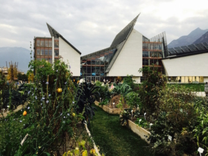 Beyond technology. A Science museum with urban gardening