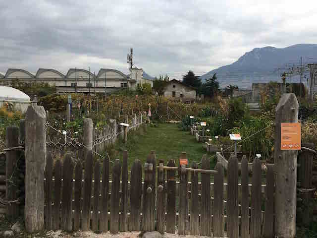 Urban garden at Museum of Technology_Trento