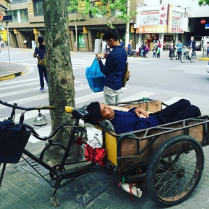 Siesta on wheels