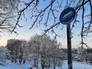 Sledging signs drag hesitant citizens to the city hills