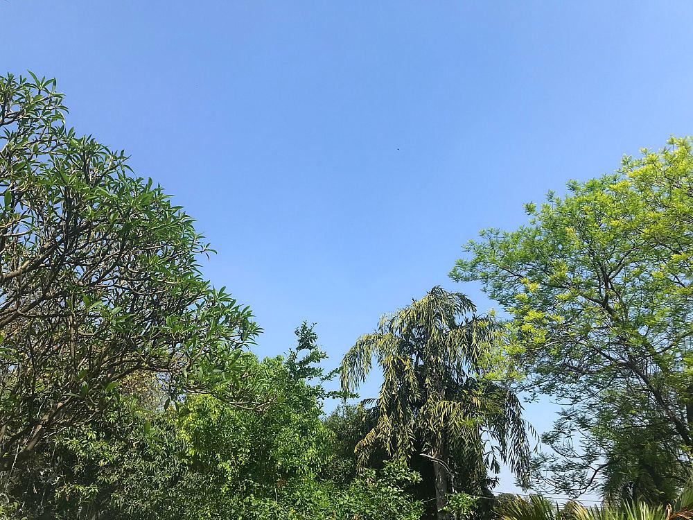 Blue-skies-Delhi