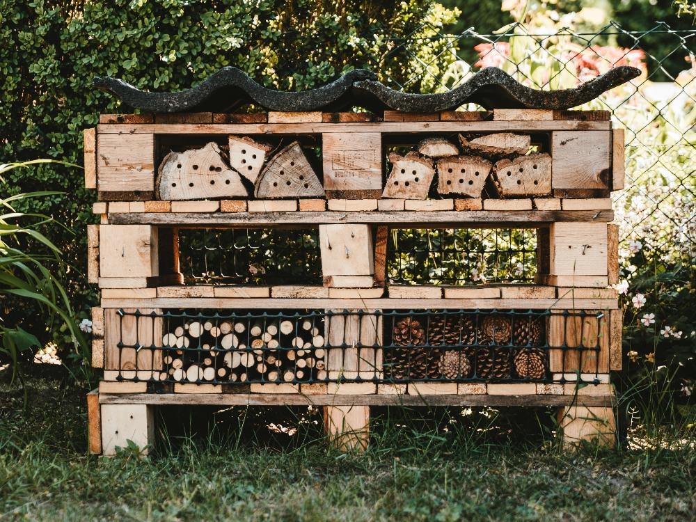 Beebnb-wild-bees-protection
