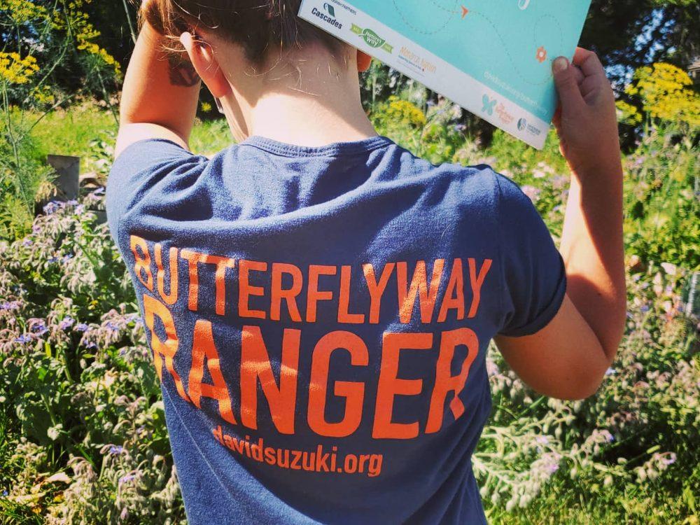 Butterflyway-project-Suzuki-foundation
