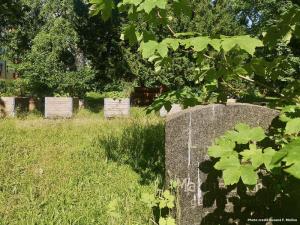 An urban garden brings new life to Berlin cemeteries