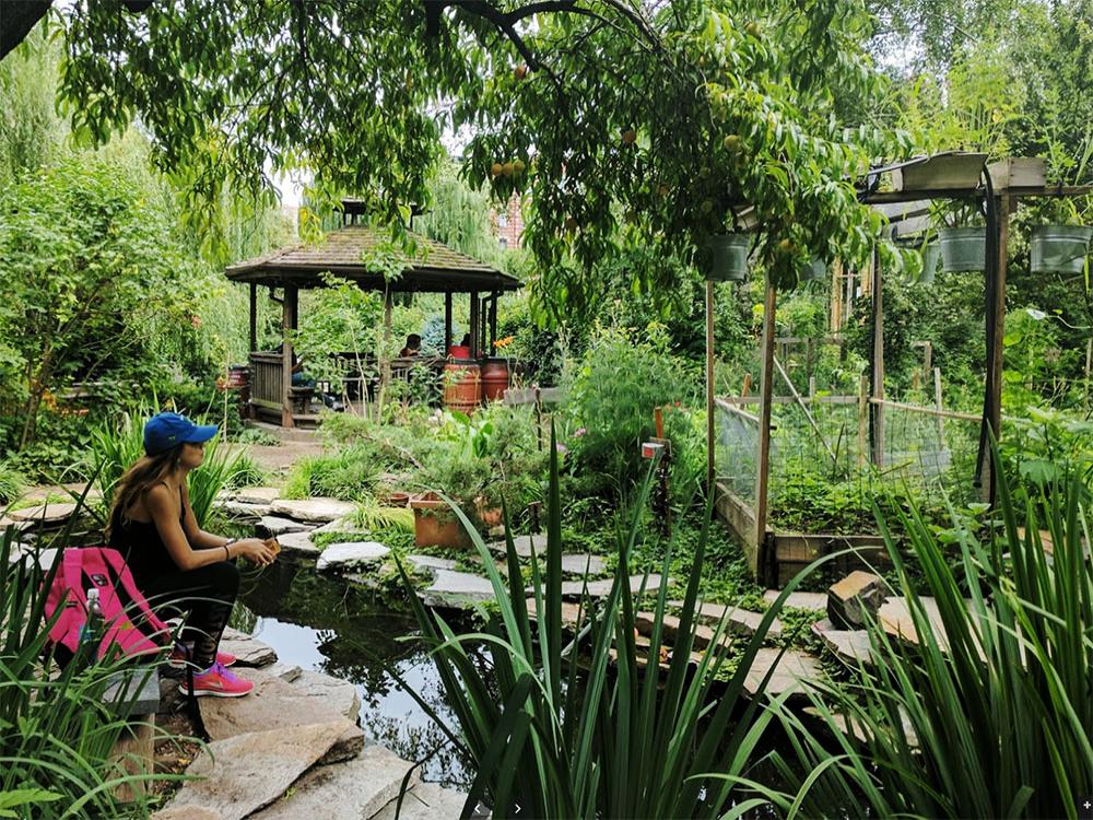 La-Plaza-Cultural-community-garden-New-York
