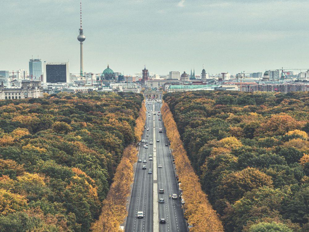Street-trees-Berlin