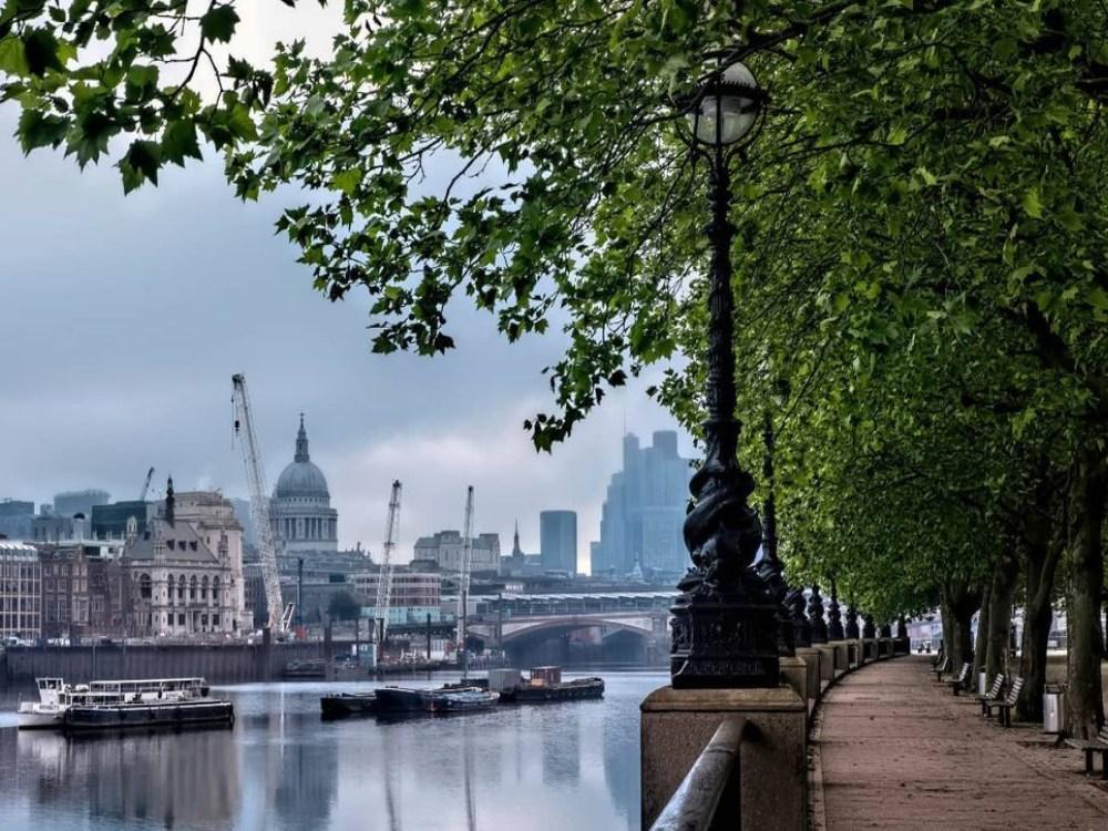 Urban-rewilding-London